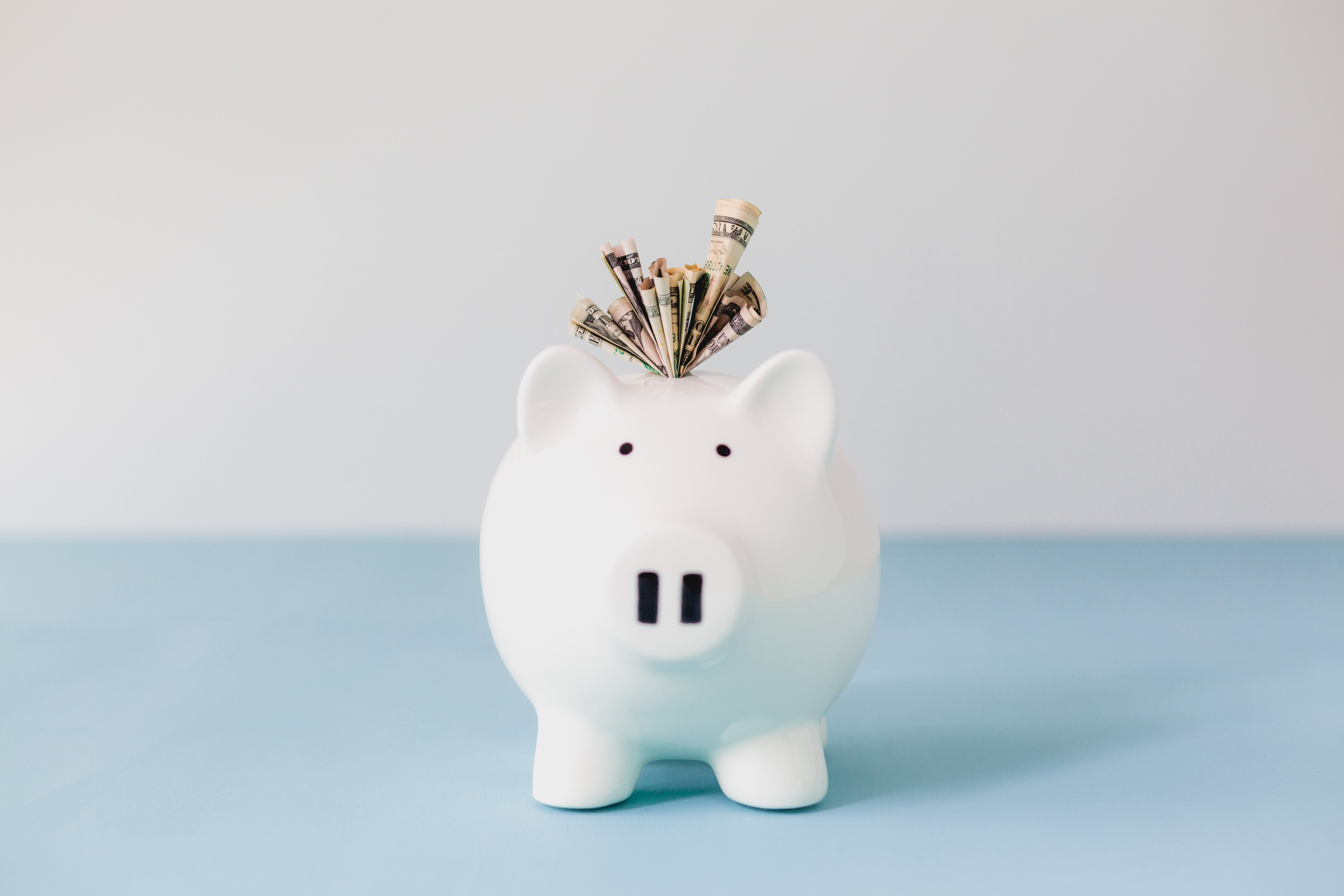 white piggy bank stuffed with money on a blue and white background
